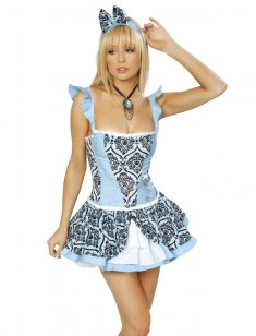 Sexy Light Blue Euro Palace Princess Costume