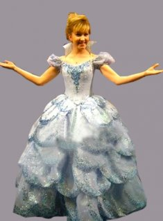Super Deluxe Disney Princess Cinderella Wedding Dress Fancy Party Dress