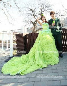 Fashion Strapless Green Organza Long Prom Dress Train Trumpet/Mermaid Dress